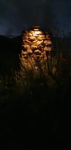 תאורה עיצובית לצמחייה