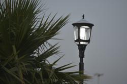 """תאורה סולארית פוריקט דרום ת""""א"""