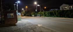 תאורה סולארית פוריקט סגולה