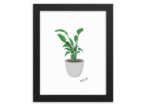 Framed Plant Life Framed poster