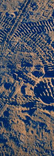 Tracks at Dawn
