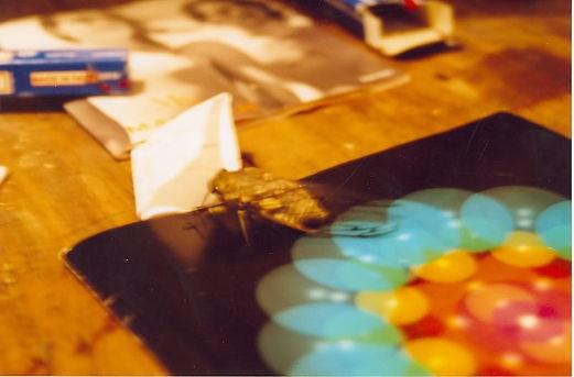 cicadachakra.jpg