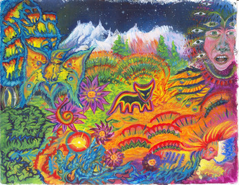 The Entity Ayahuasca in Disguise