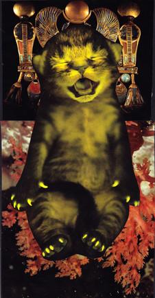 CatScan