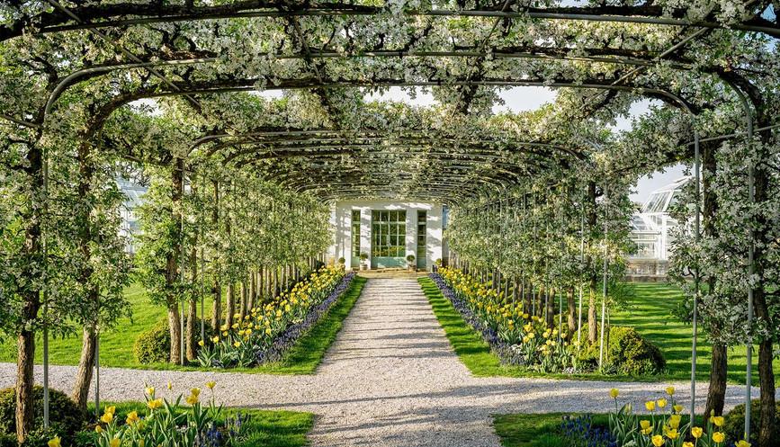 Image Credit: Oak Spring Garden Foundation