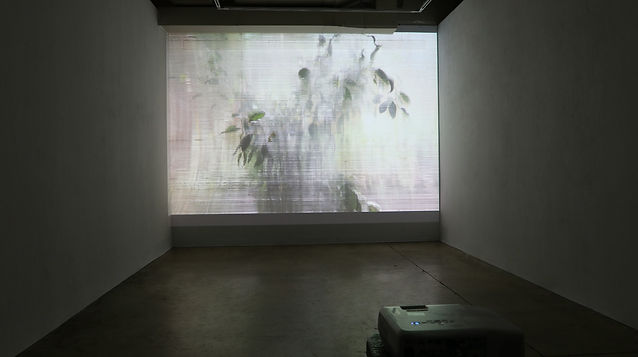 Installation view projector.jpg