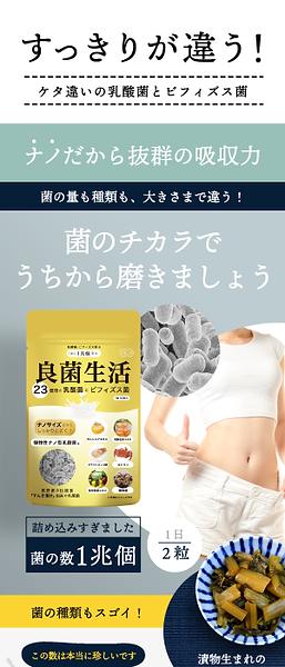 楽天商品ページ制作 サプリ