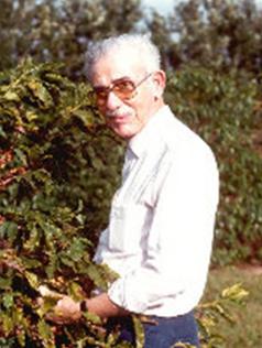 Alcides Carvalho