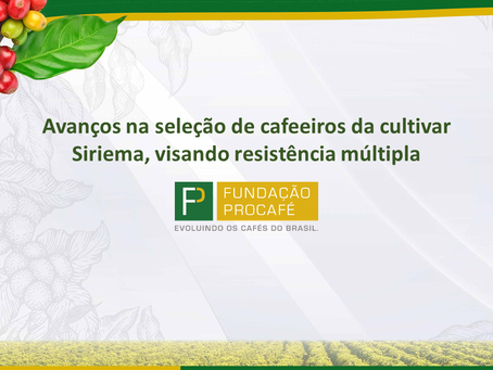 Folha Técnica 543