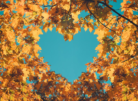 Fall is a Time for Love