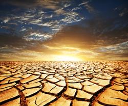 Watering Barren Land?