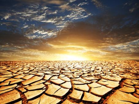 Stop Watering Barren Land