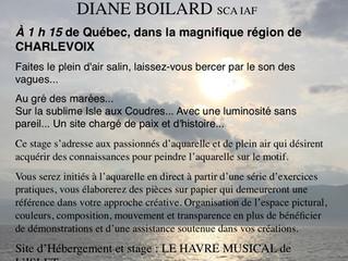 Stage d'aquarelle avec Diane Boilard