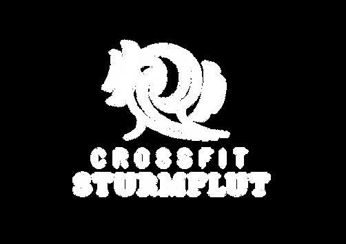 20191212_cfs_logo_redesign_weiss.png