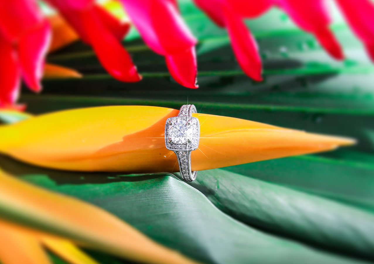 St. Lucia Proposal Photography Private W