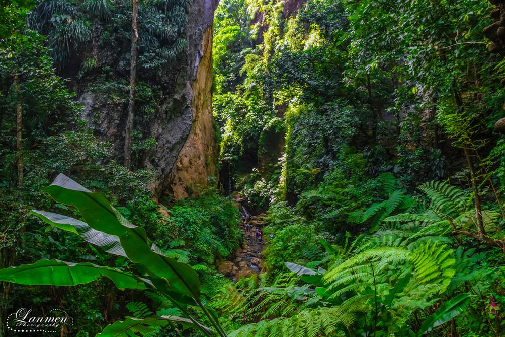 Saint Lucia Landscape Photogaphy Canaris