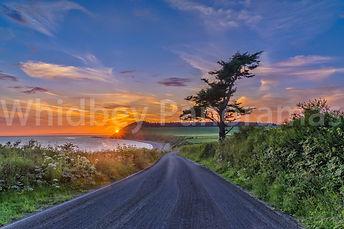 Watermark WHidbwy Panorama.jpg