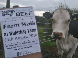 Farm walk coming up