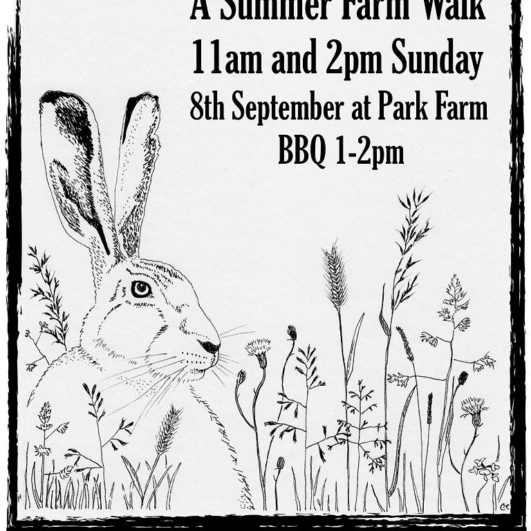 A Summer Farm Walk (Afternoon 2pm)