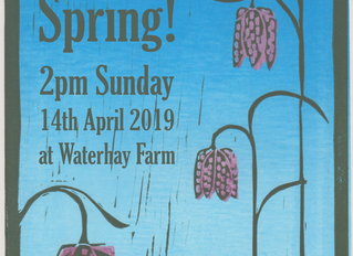 Step into Spring - our first farm walk of the year