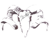 Saint A logo.jpg