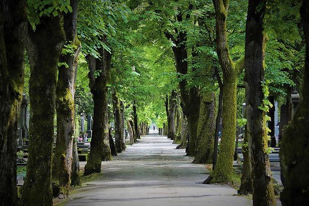 Friedhof Weg.jpg