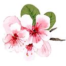 flower cluster.png