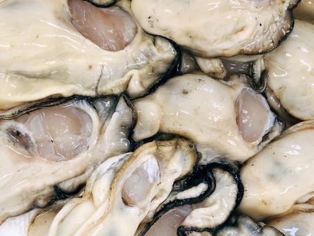 牡蠣は鍋におすすめ!