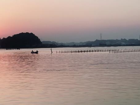 今朝の浜名湖