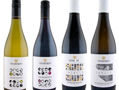 Neu bei ViP WEINE: VigneDiLeo mit Spitzen-Verdicchio aus den Marken