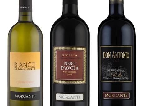 Wine Advocate: Jubelmeldung für Morgante