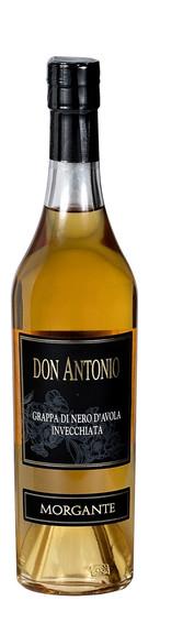 Dom Antonio