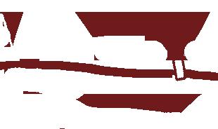Divider for AOTDL Newsletter Template