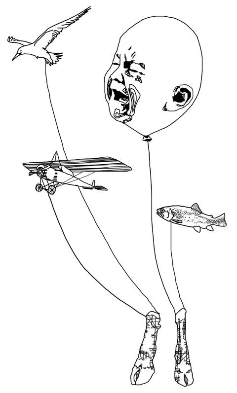 Bébé poisson oiseau avion
