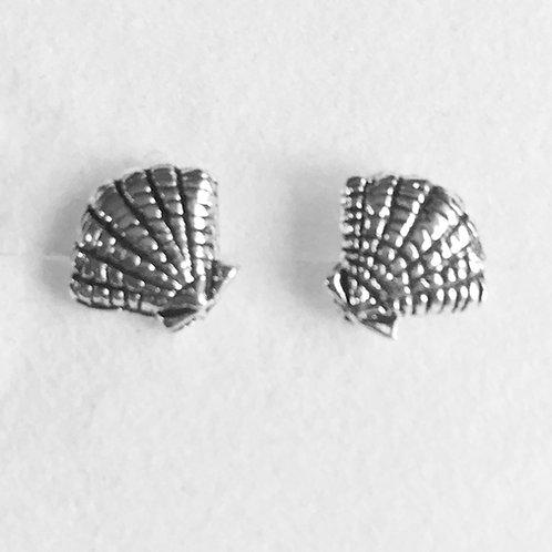 Oxidised Scallop Shell Stud Earrings