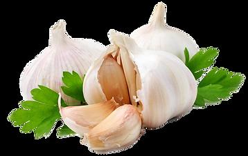 Download-Garlic-PNG-Image.png