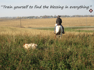 train yourself to find the blessing in e