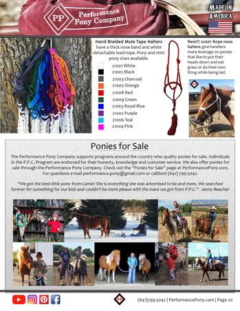 P20 halters and pony programs C4.jpg