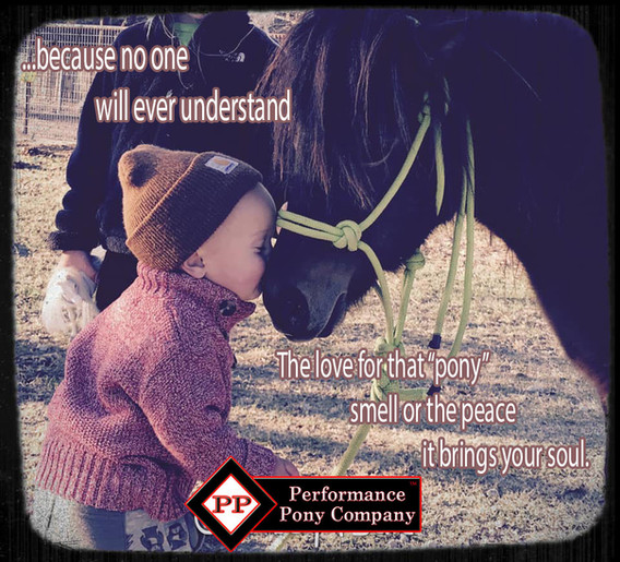 pony smell.jpg