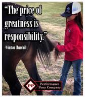 juju greatness responsibility.jpg