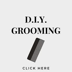 DIY Grooming button.png