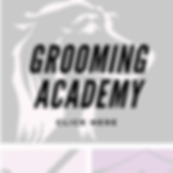 Grooming Academy.png