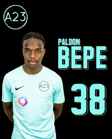paldon bepe.png