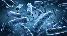 ProtectPure Traitements antibactériens permanents antimicrobiens gastroentérite