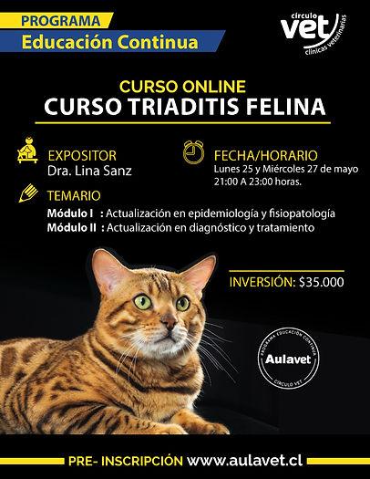 triaditis felina.jpg