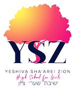 YSZ%20_Logo_Primary_wName_edited.png