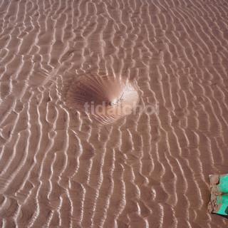 Circular scour hole, ripples