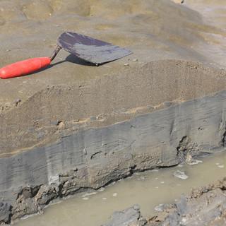 Cross-bedded sands