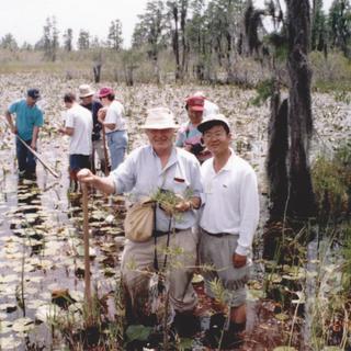 Tidalite 1996