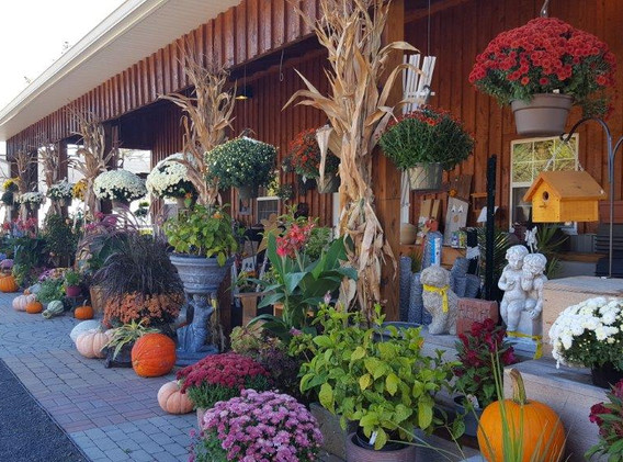 fall - front of store.jpg